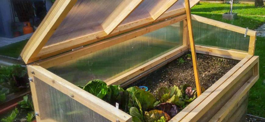 Jesensko in zimsko vrtnarjenje